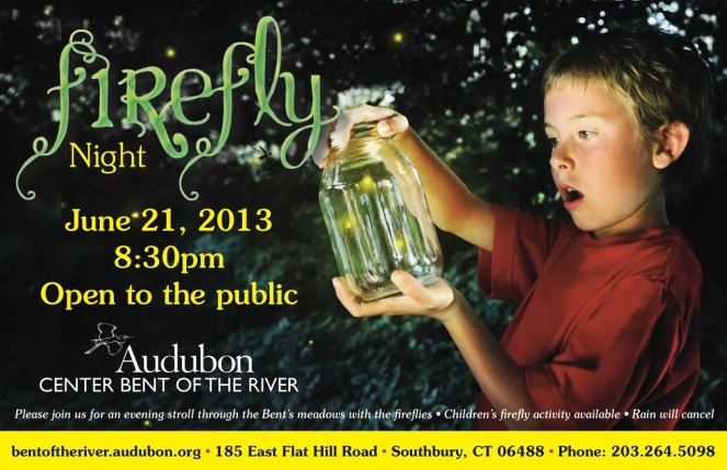Audubon Firefly Nite Postcard copy copy